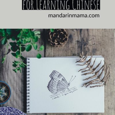 Realistic Expectations for Learning Chinese