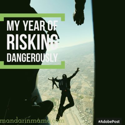 My Year of Risking Dangerously