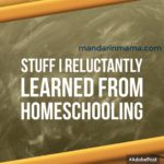 Stuff I Reluctantly Learned from Homeschooling, Vol 2
