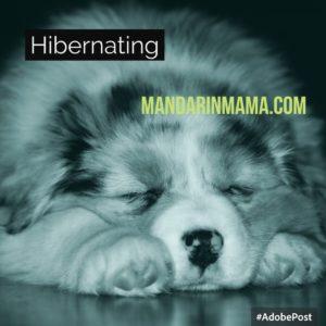 Hibernating