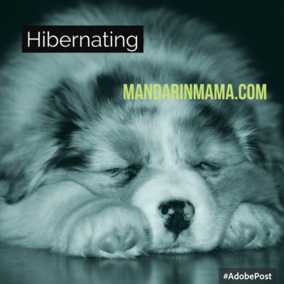 Hibernating