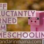 Stuff I Reluctantly Learned from Homeschooling, Vol. 4