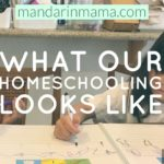 What Our Homeschooling Looks Like