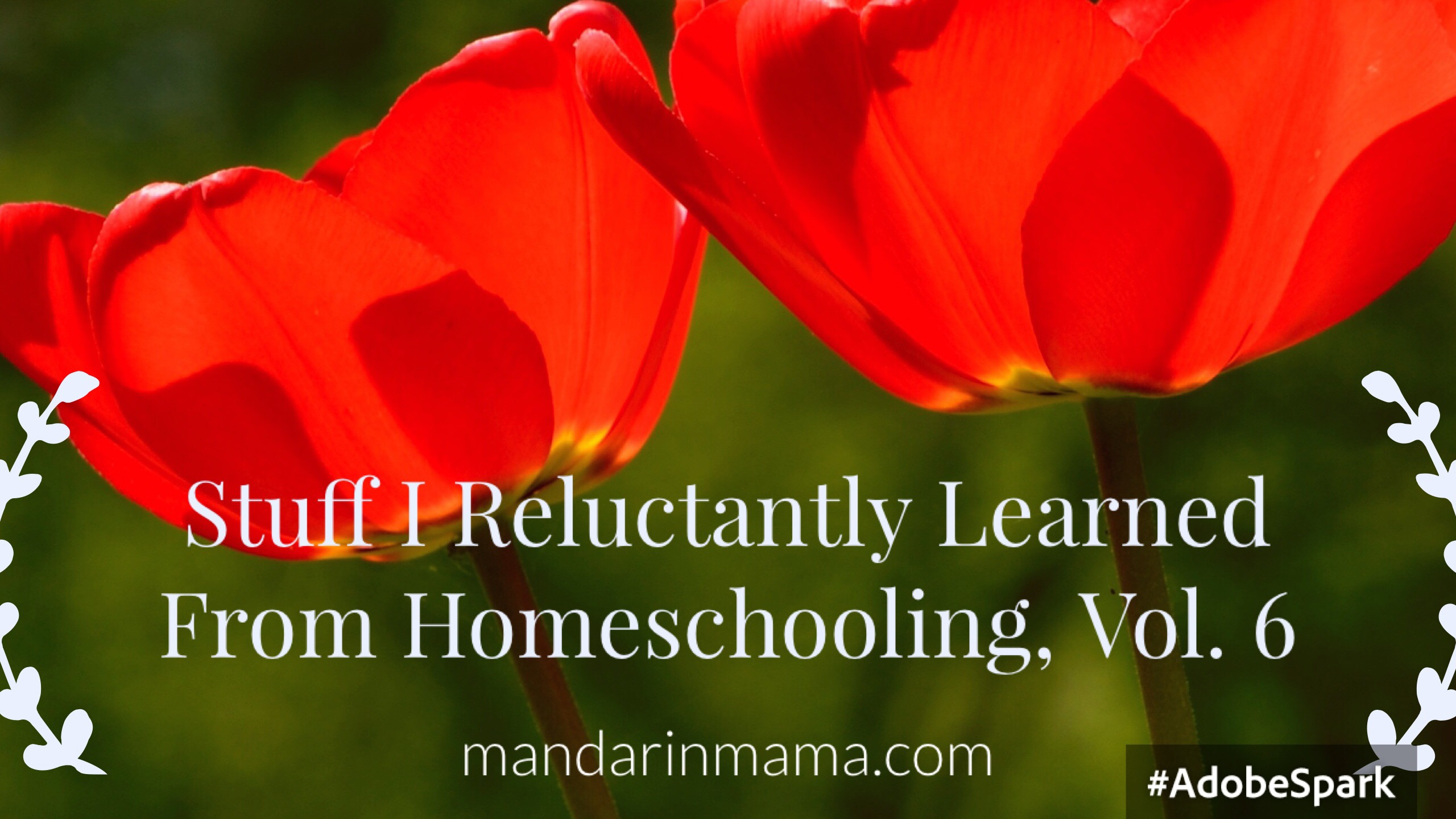 Stuff I Reluctantly Learned from Homeschooling, Vol. 6