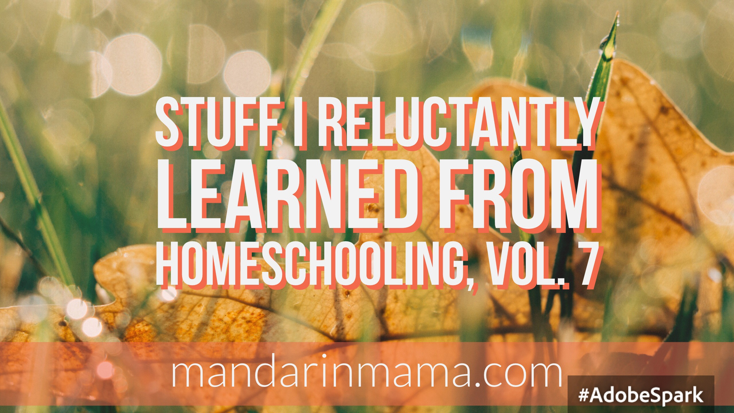 Stuff I Reluctantly Learned from Homeschooling, Vol. 7