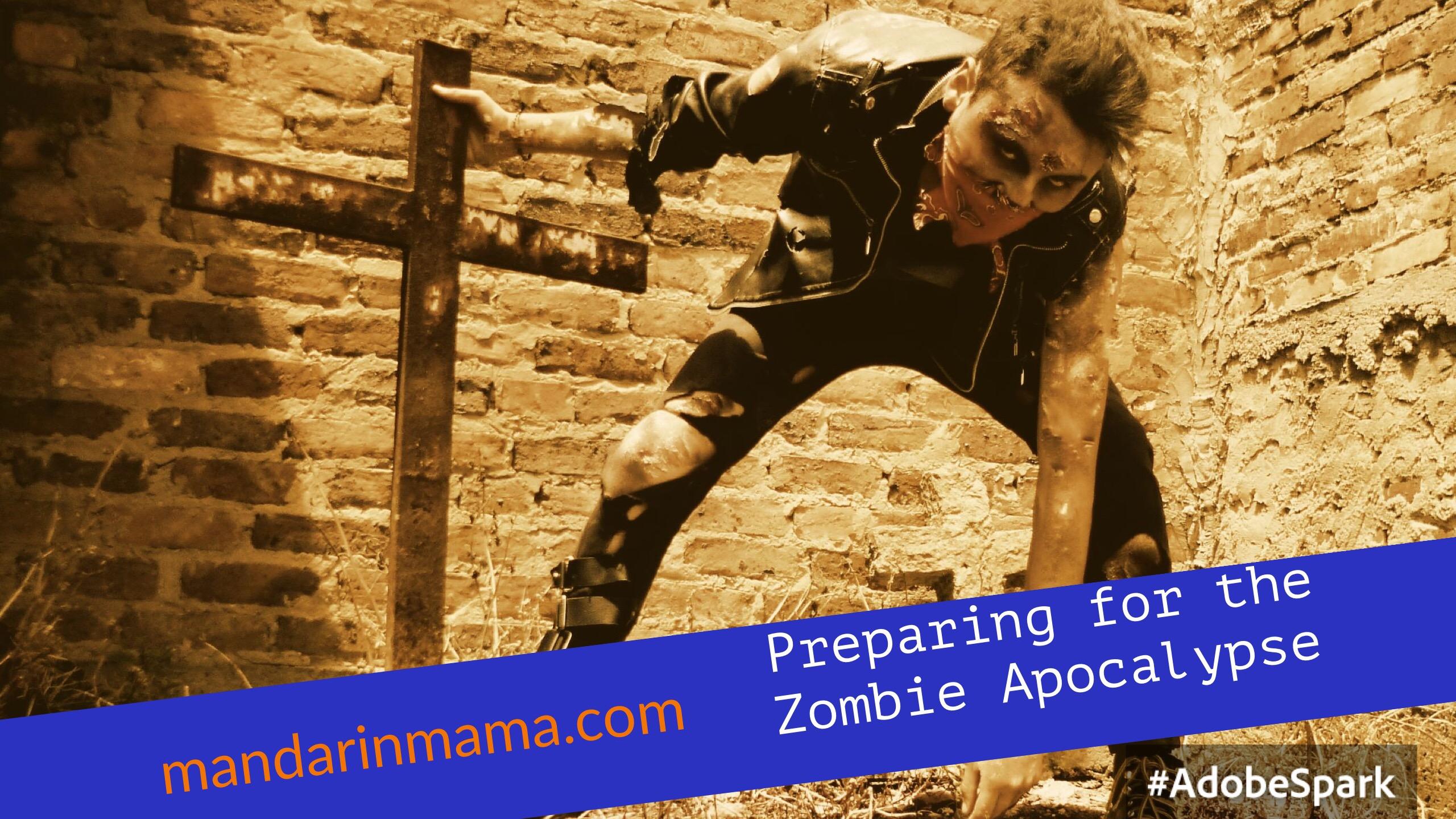 Preparing for the Pending Zombie Apocalypse