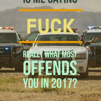 Is Me Saying Fuck Really What Most Offends You in 2017?