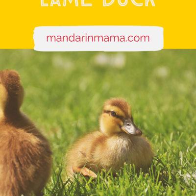Feeling Like a Lame Duck