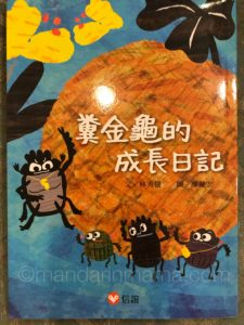 chinese chapter book
