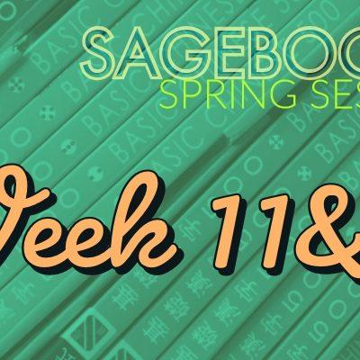 Sagebooks Spring 2019 Session: Week 11&12