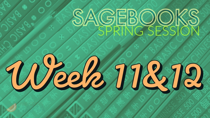 Sagebooks Spring 2019 Session: Week 11&12
