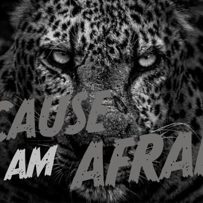 Because I Am Afraid